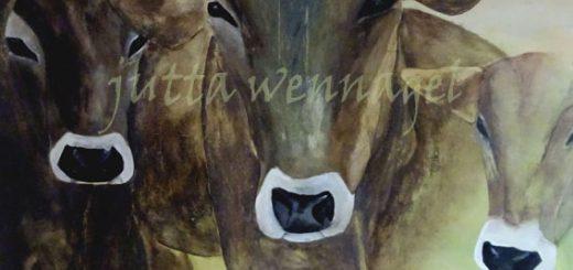 kuehe kunstbild