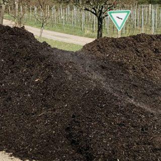 komposthaufen im wingert